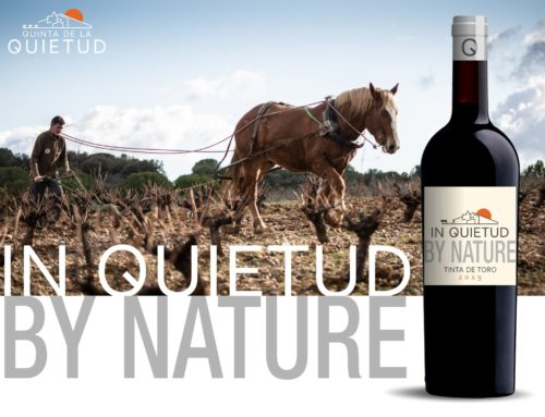 In Quietud by Nature, the first natural wine from Quinta de la Quietud